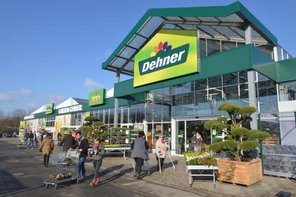 Neugierig strömten die Chemnitzer gestern ins neue Gartencenter, schauten sich auf 700 Quadratmetern um.