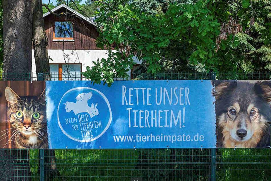 Hilfe gesucht: Das Tierheim Vielauer Wald braucht Tierheimpaten, um finanziell über die Runden zu kommen.