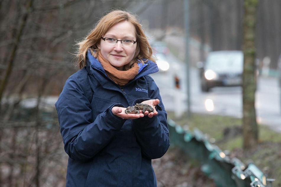 Von Ekel keine Spur! Kristin Pietzsch (31) fasst die warzigen Kröten auch ohne Handschuhe an. Schleimig wird's bei Fröschen.