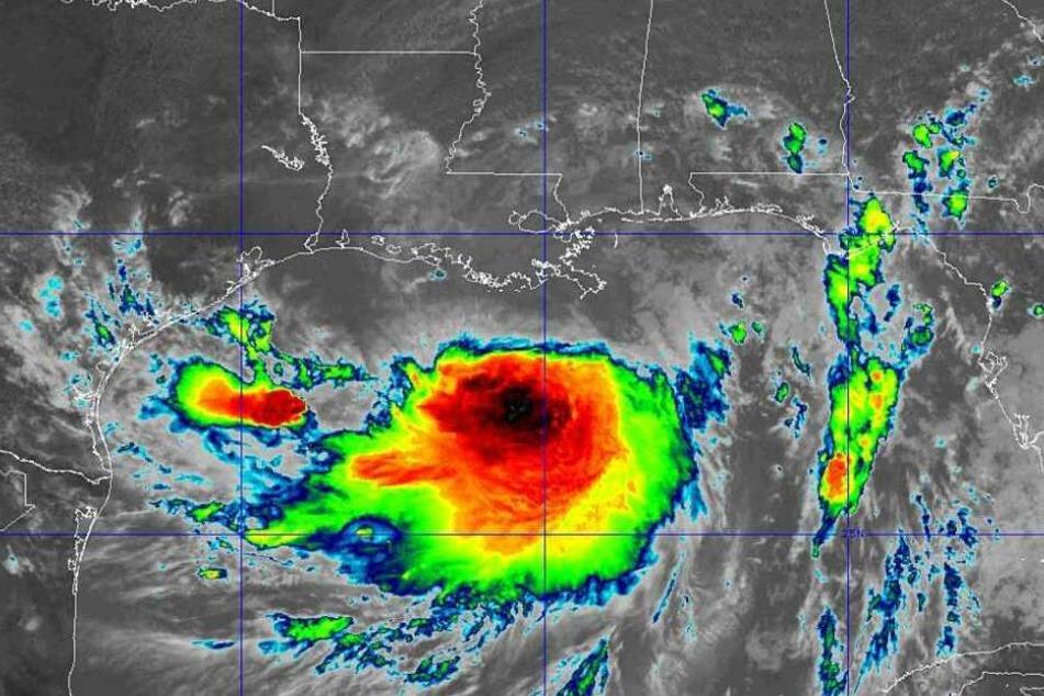 """Ein Satellitenbild das die Bewegung von Sturm """"Barry"""" zeigt."""