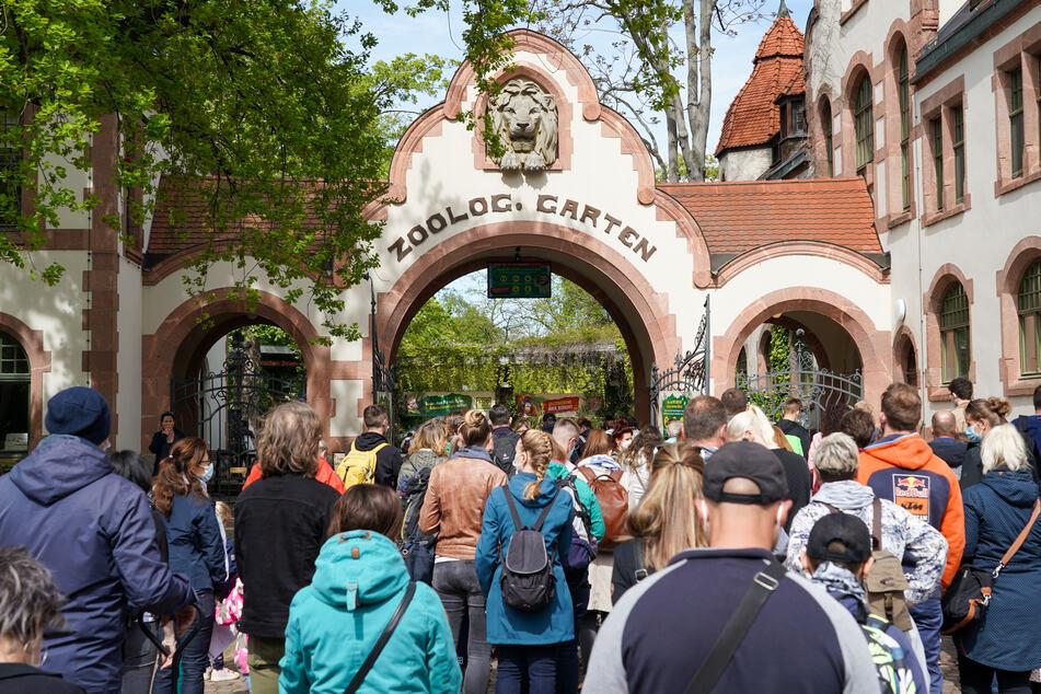 Die sächsischen Zoos und Tierparks wollen die Impfkampagne der Regierung unterstützen.