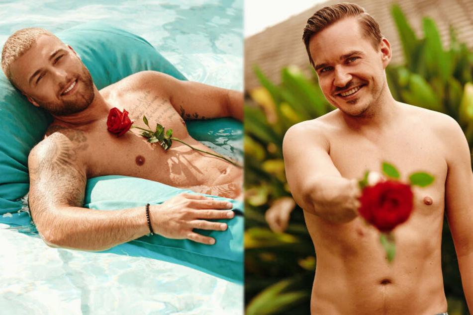 """Sportfreak und DJ freuen sich bei """"Bachelor in Paradise"""" auf mehr Mädels"""