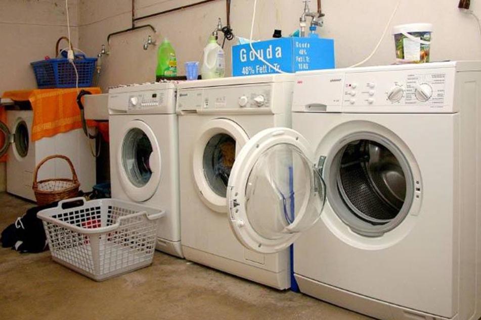 Gemeinschaftliche Waschkeller laden schon zur gemeinschaftlichen Nutzung der Waschmittel ein - auch wenn man nicht fragt.