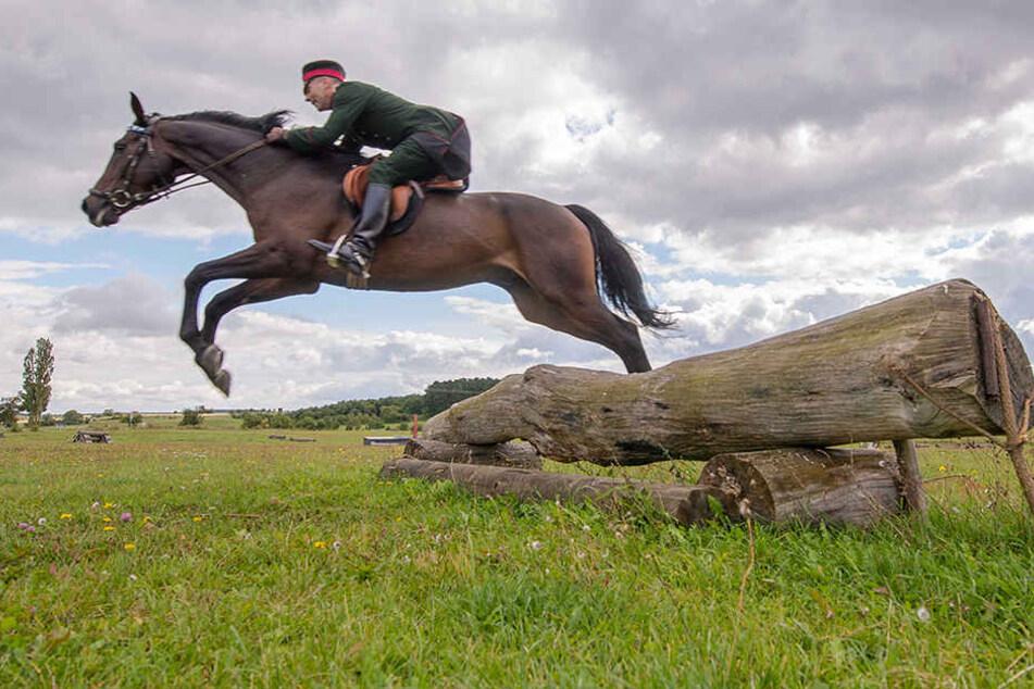 Lachmeyer demonstriert mit seinem Pferd eine der Wettkampfdisziplinen.