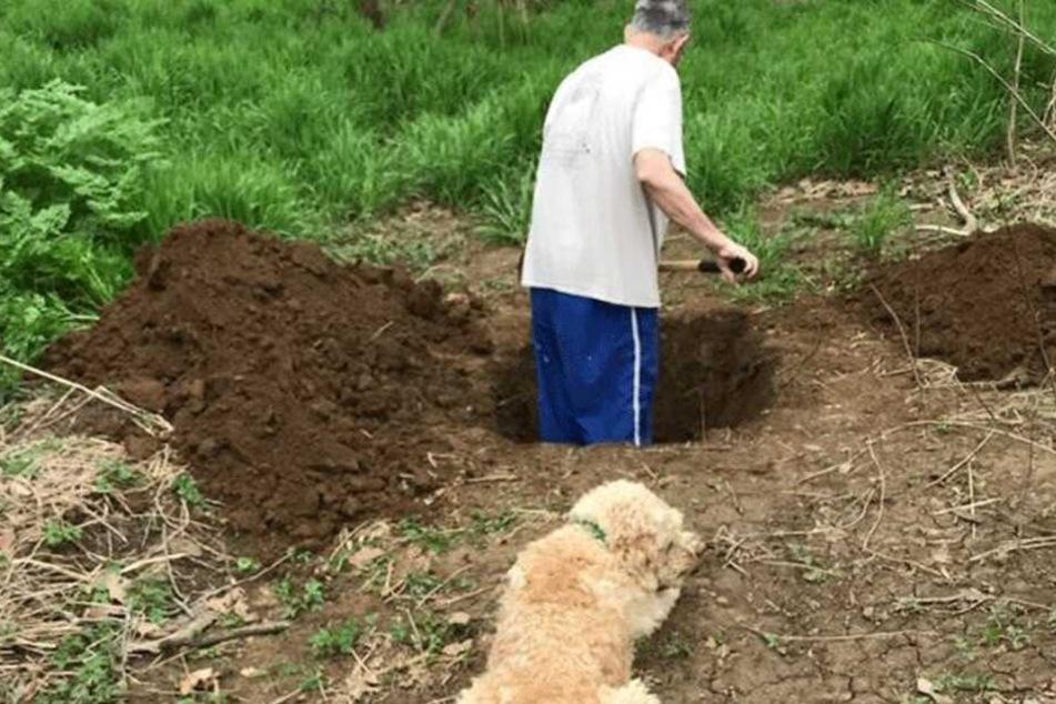 Der Besitzer grub fleißig, der Hund sah ihm zu.