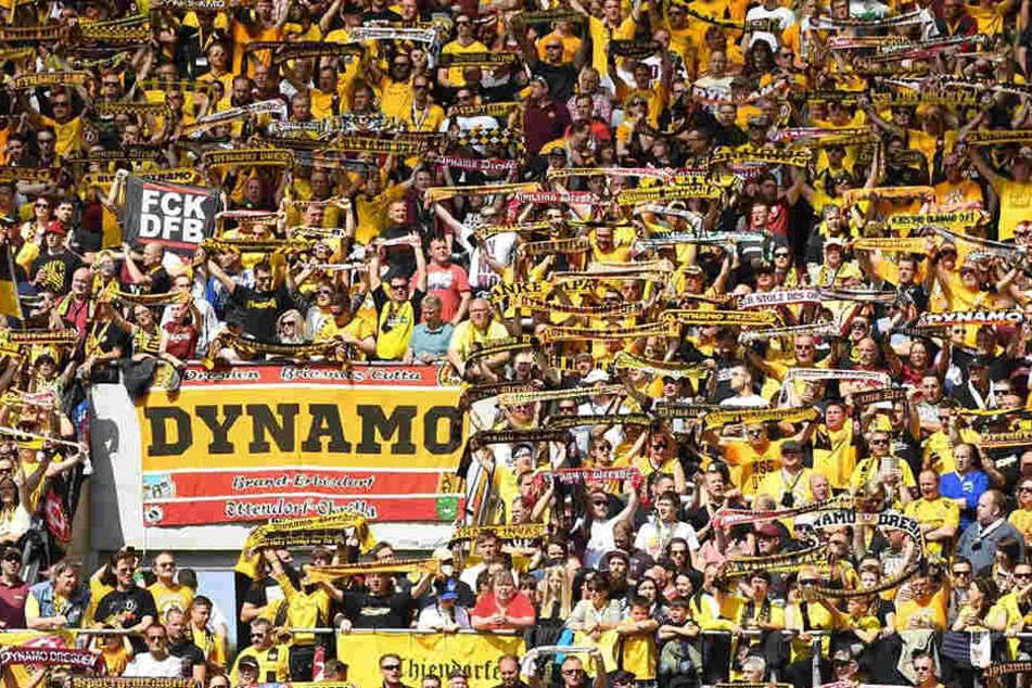 Viele Dynamo-Anhänger geben fürs Hamburg-Spiel keinen Pfifferling auf die Schwarz-Gelben, gehen von einer klaren Niederlage aus.