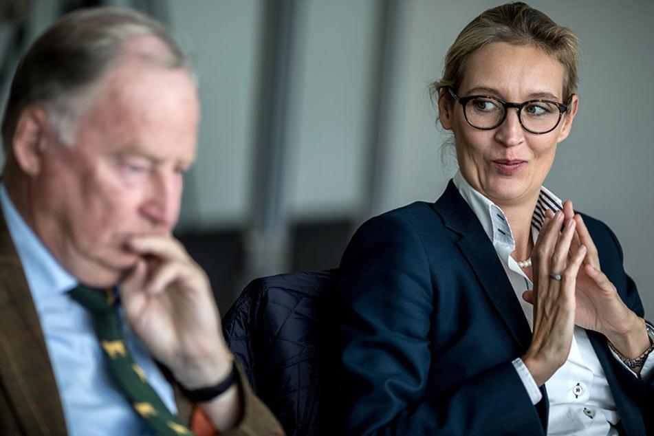 Das Wahlprogramm der AfD gilt einer Untersuchung zufolge als unverständlich. Was Alexander Gauland (76, rechts) und Alice Weidel (38) wohl davon halten?