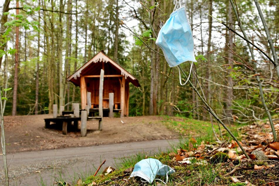 Masken-Müll findet sich in vielen Wäldern, auch in der Dresdner Heide.