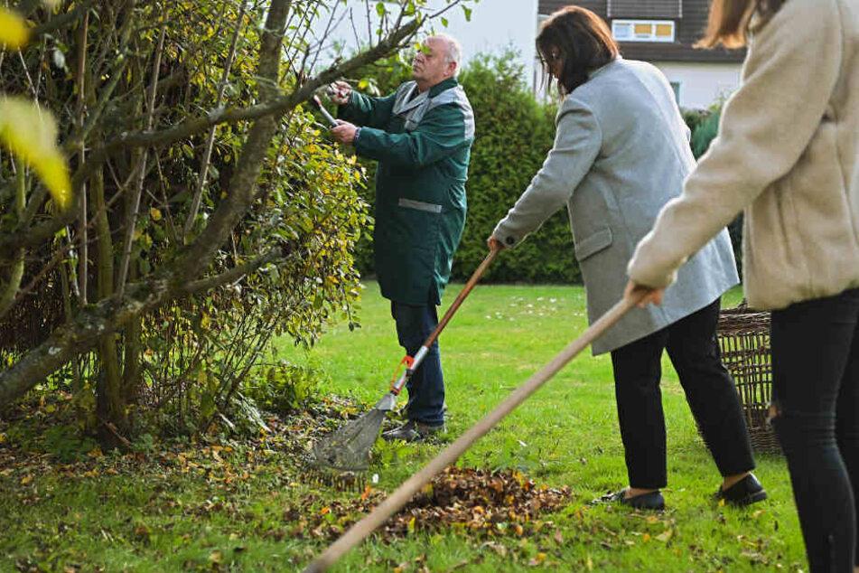 Gerd Bechler hilft zusammen mit seiner Tochter Ramona (M) und Enkelin Hanna (r) bei der Gartenarbeit einer 85-Jährigen.