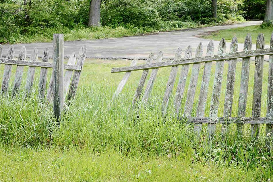 In beiden Kleingartenanlagen wurden Zäune zerstört. (Symbolbild)