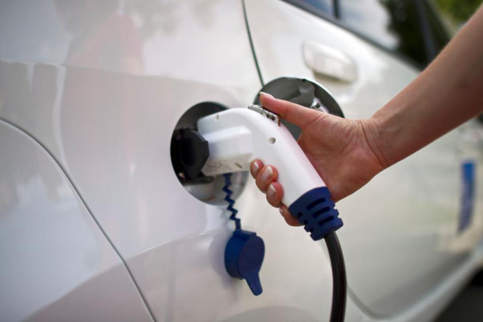 Für Elekto-Autos elementar: Batteriezellenproduktion. (Symbolbild)