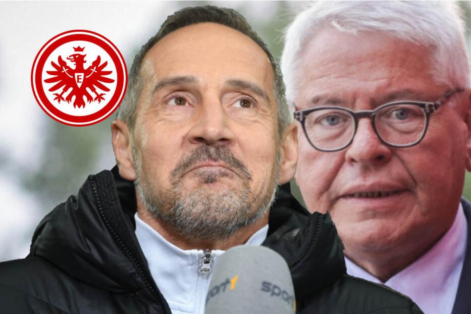Trotz Eintracht-Krise: Boss Steubing schwärmt von Trainer Adi Hütter