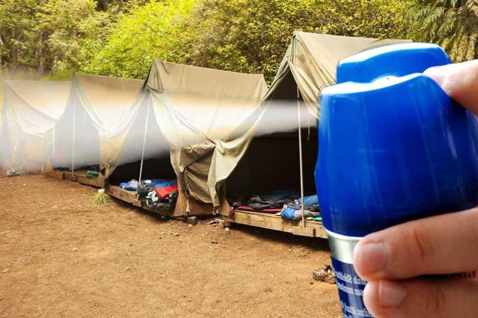 Mückenspray wurde mehreren Mädchen eines Zeltlagers zum Verhängnis (Symbolbild)