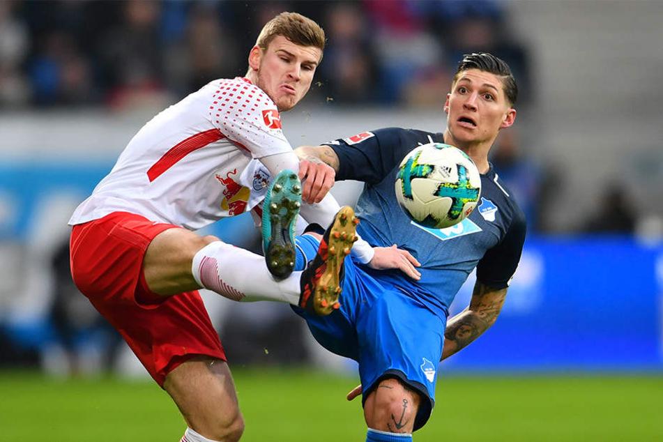 Timo Werner (l., RB Leipzig) kämpft mit Steven Zuber (r., Hoffenheim) um den Ball.