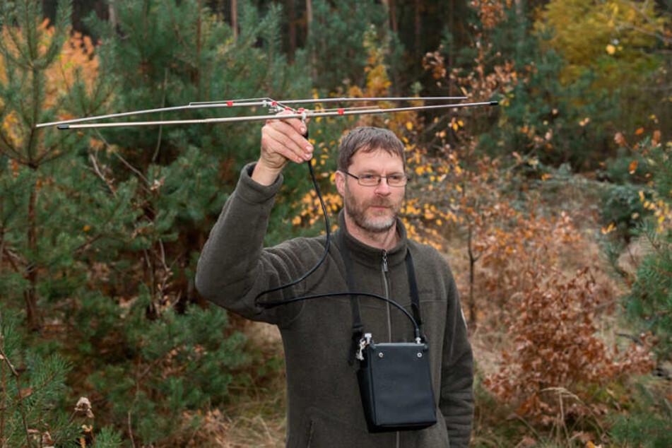Michael Striese versucht mit der Telemetrie-Antenne, den Jungbullen zu  orten.