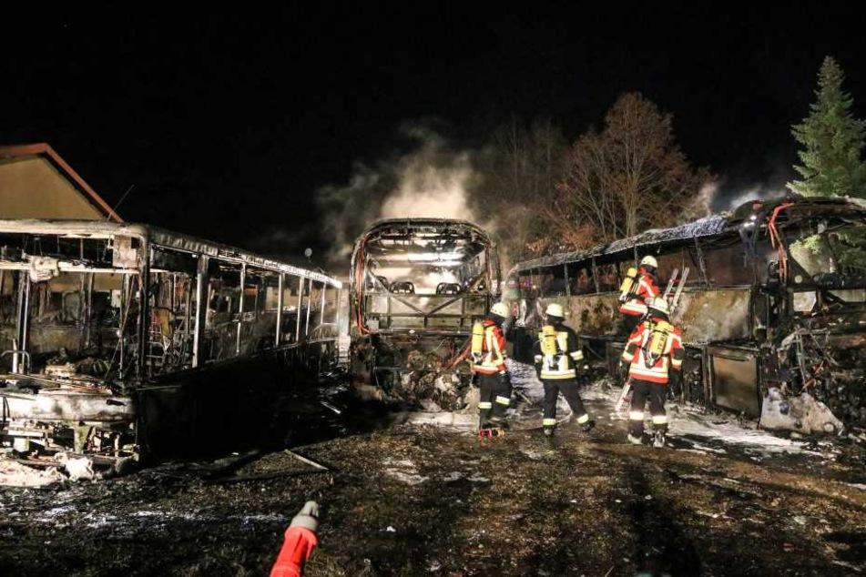 Die Reisebusse brannten vollständig aus.