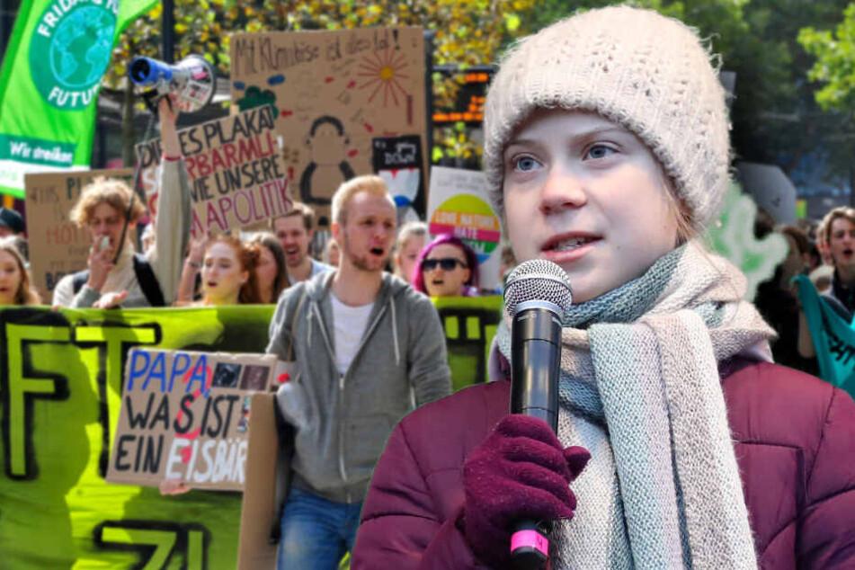 TU Chemnitz-Umfrage: Greta geht die Puste aus