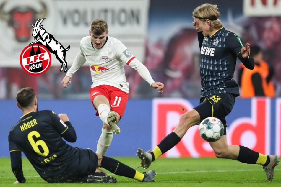 1. FC Köln kommt in Leipzig unter die Räder: Vierte Pleite in Folge!