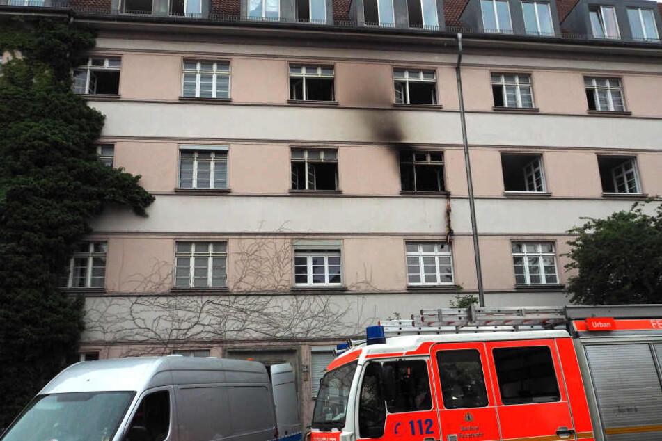 Ein 45-jähriger Mieter und seine Katze starben bei dem Wohnungsbrand in Leipzig-Reudnitz-Thonberg. (Symbolbild)