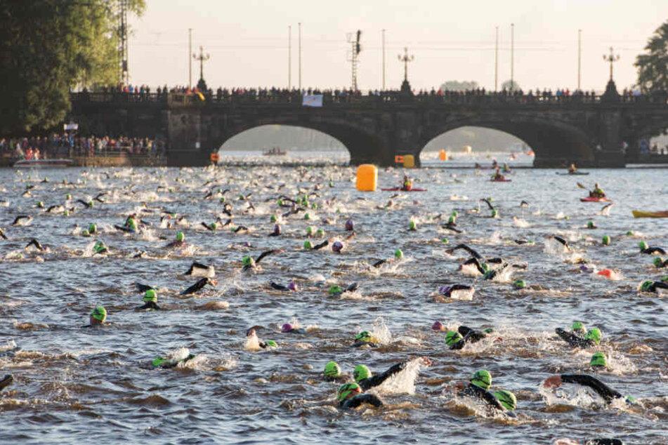 Wie Fische im Wasser: Die Teilnehmer des Ironman 2017 (Archivbild).