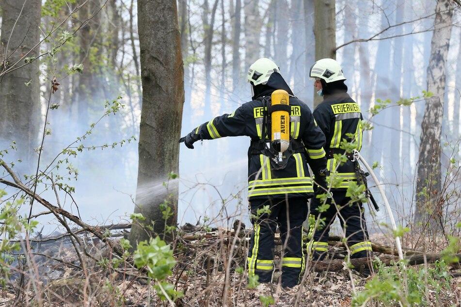 An der Talstraße in Meerane brannte am Dienstag ein etwa 500 Quadratmeter großes Waldstück. Das Feuer konnte schnell gelöscht werden.