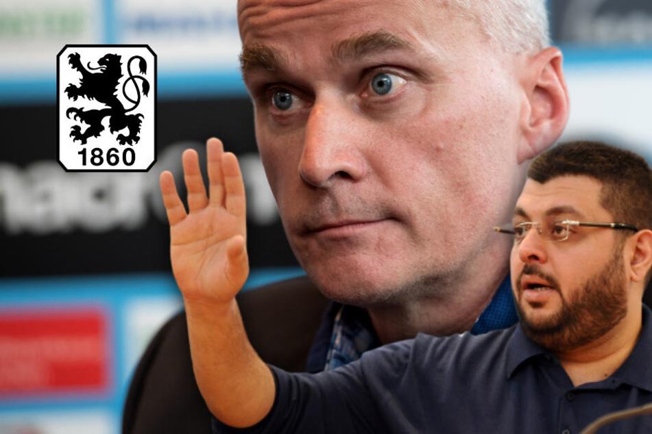 TSV 1860 München: Wer wird der neue Präsident?