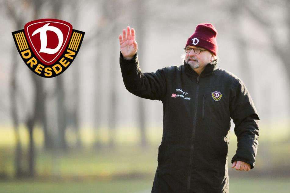 Video: Dynamo-Trainer Heiko Scholz stellt sich vor