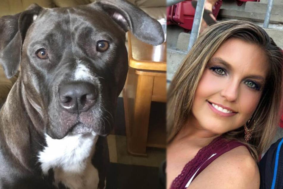 Frau rettet zwei Hunde, dann wird sie von ihnen getötet