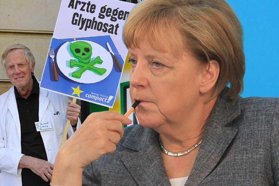 Angela Merkel (62, CDU) will an Glyphosat festhalten: Studien würden belegen, dass die Risiken durch Glyphosat nicht sehr groß seien.