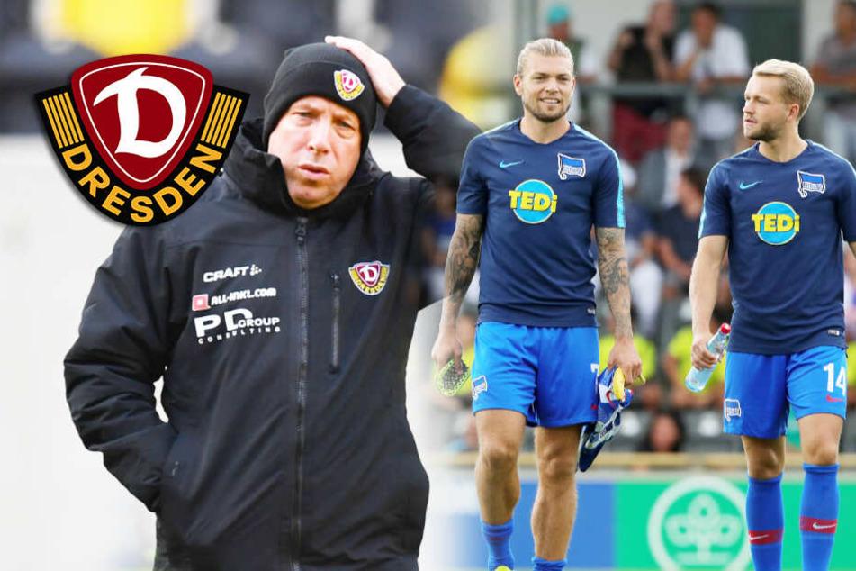 Dynamo Dresden: Jagd auf Esswein und Köpke von Hertha neu eröffnet!