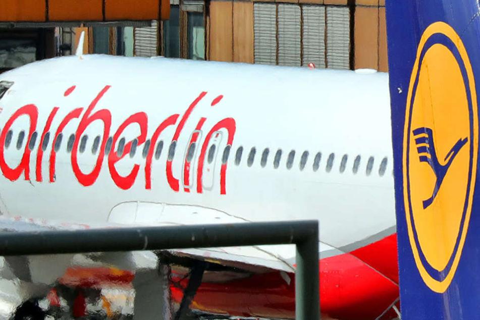 Air Berlin verhandelt aktuell mit Lufthansa über eine mögliche Übernahme.