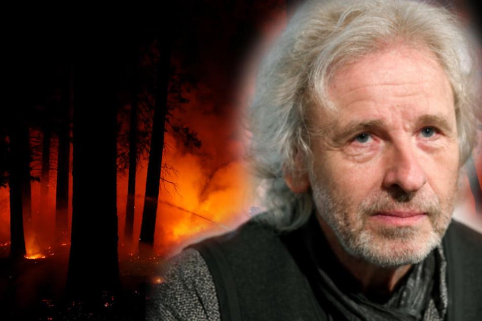 Feuerfester Safe half nichts: Gottschalk verlor bei Brand alle Urkunden seiner Familie