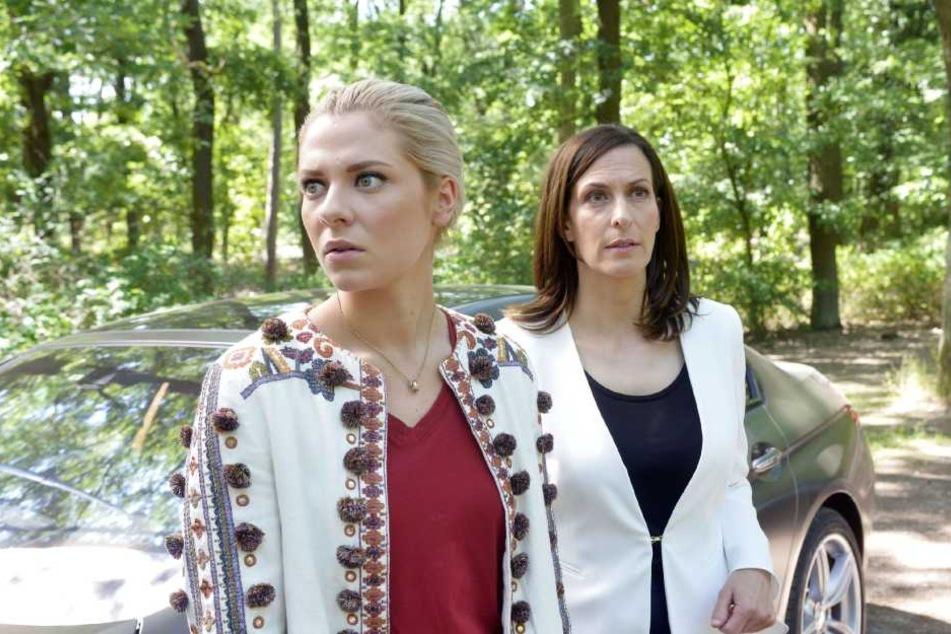 Im Wald suchen Katrin und Sunny verzeifelt nach Jo.