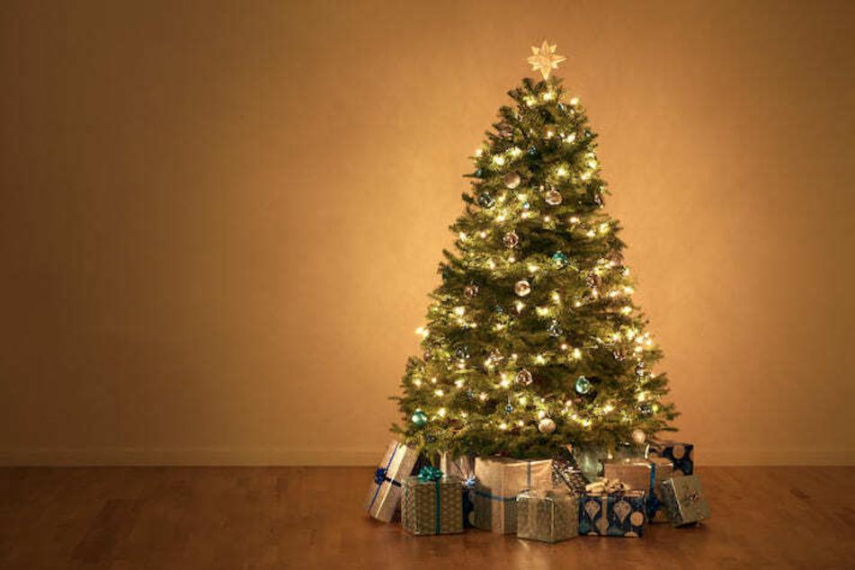 Zum Fest der Liebe gehört er einfach dazu: der Weihnachtsbaum.
