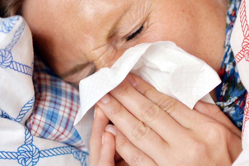 Wegen Corona-Maßnahmen: Keine Grippewelle in Deutschland
