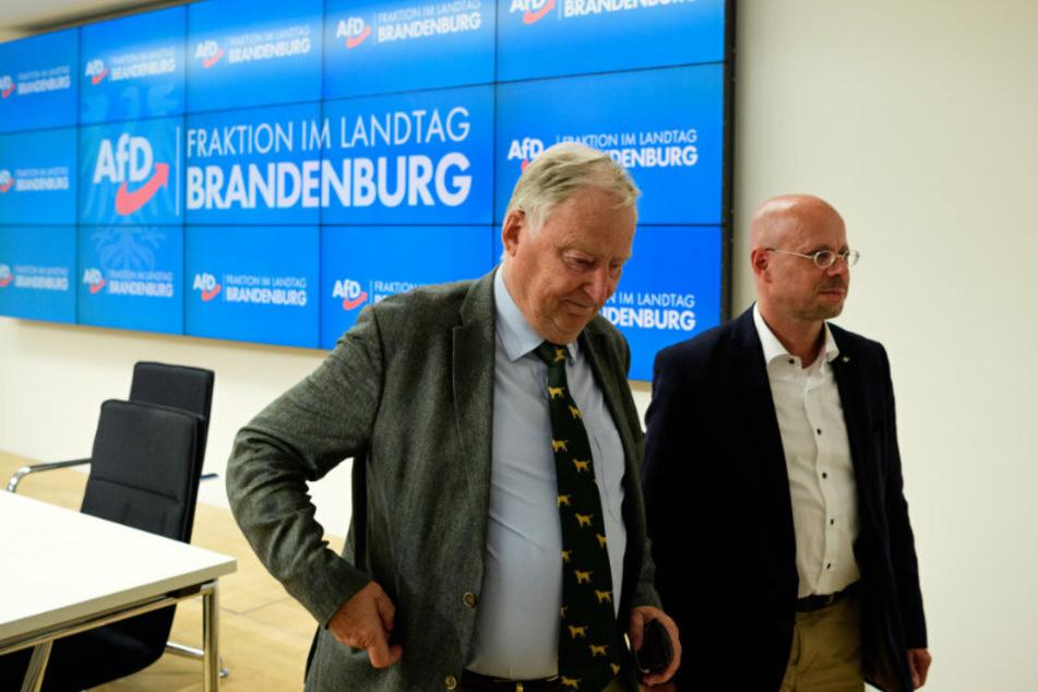 Alexander Gauland, (79, l.) Ehrenvorsitzender der AfD, und Andreas Kalbitz (47), Brandenburger AfD-Fraktionsvorsitzender, verlassen nach einer Pressekonferenz nach der Sitzung der Brandenburger Fraktion den Raum.
