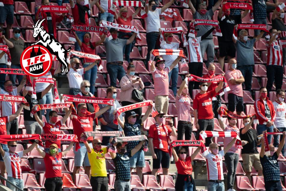Wegen Corona: Doch keine Zuschauer beim Heimspiel des 1. FC Köln erlaubt!