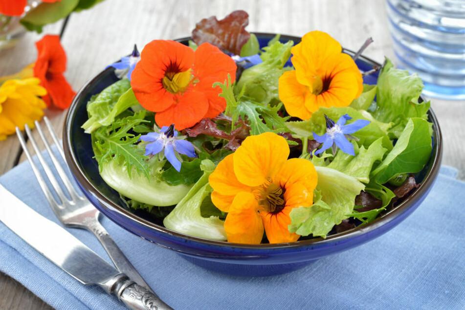 Würzige, ungiftige Blüten von Kräutern wie der Kapuzinerkresse machen direkt Appetit.