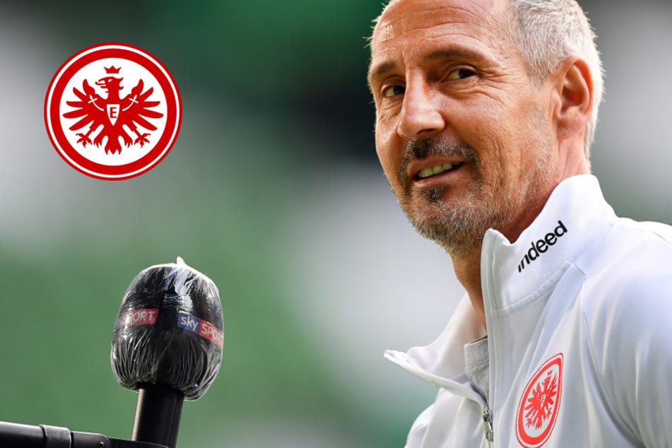 Eintracht hofft weiter auf Europa: Hütter mit großer Kader-Überraschung in Köln