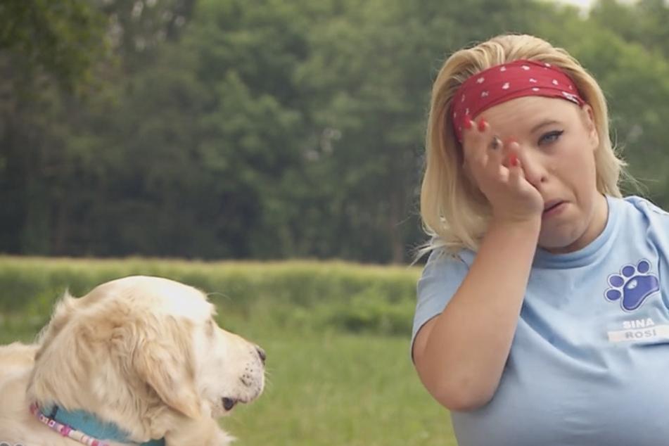"""""""Könnte mir jetzt Snickers und Twix reinpfeifen!"""" Erste Ergebnisse bei """"Mein Hund, die Kilos und ich"""""""
