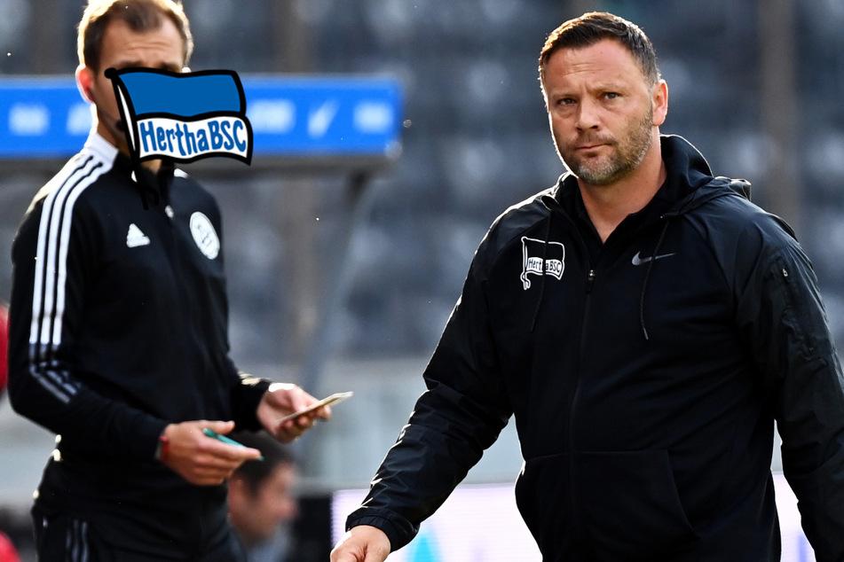 Hertha-Krise immer schlimmer: Darum würde auch ein Trainerwechsel nichts ändern