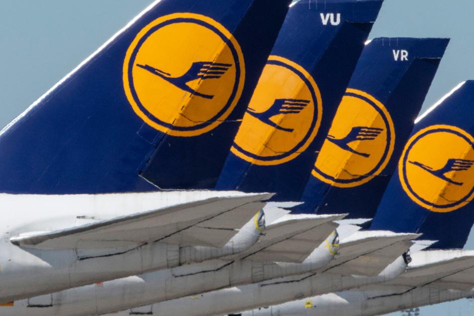 Scheitert der Rettungsplan? Lufthansa warnt vor Insolvenz