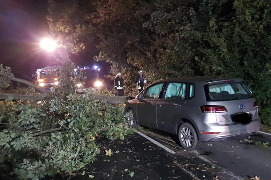 Der Baum war einmal quer über die Landstraße gekracht - ein herannahendes Auto kollidierte mit ihm.