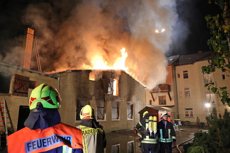 Dresden: Großbrand in Radeburg: Ehemalige Tischlerei steht in Flammen!