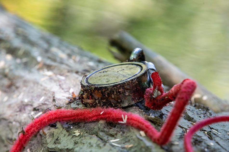 Am Ende des Seils war ein etwa handtellergroßer Magnet befestigt.
