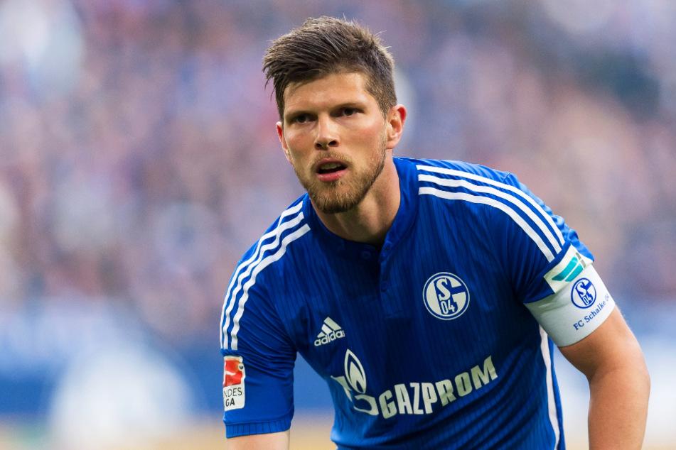 Klaas-Jan Huntelaar (37) will den FC Schalke 04 zum Klassenerhalt schießen!