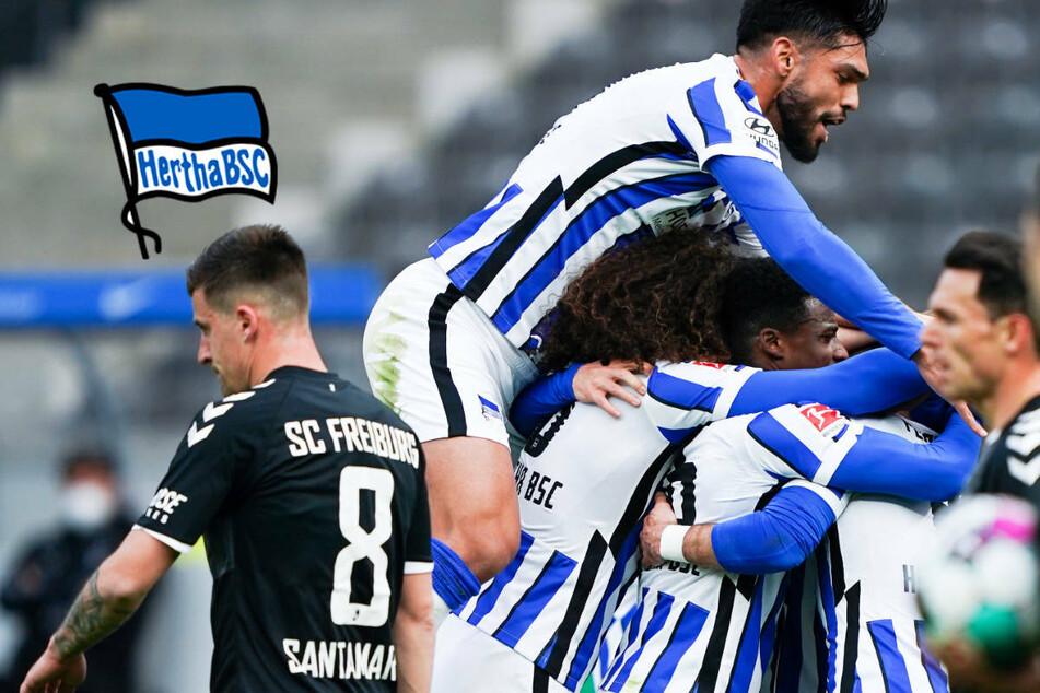 """Hertha BSC mit Rotation aus der Abstiegszone: """"Wächst etwas zusammen"""""""