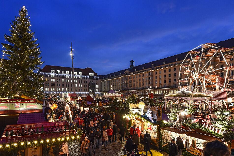 Der Weihnachtsbaum prägt das Bild vieler Weihnachtsmärkte, wie hier beim Dresdner Striezelmarkt gut zu erkennen ist.