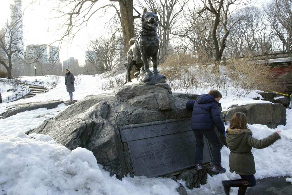 A bronze statue of Balto the dog stands in his memory in New York's Central Park (archive image).