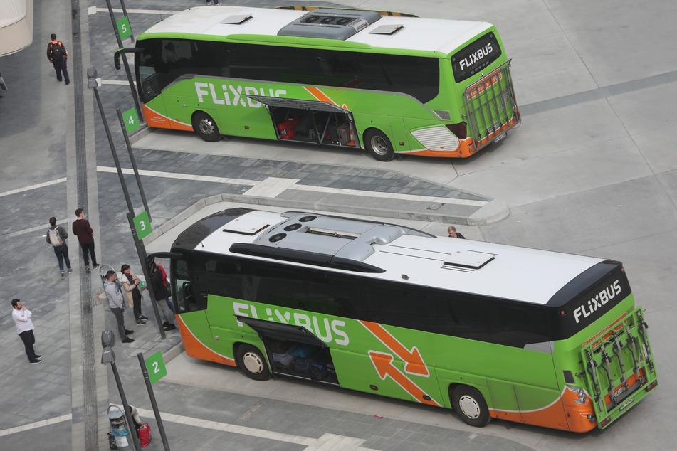 Flixbusse an einem Fernbus-Bahnhof. (Symbolbild).